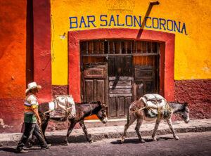 Colonia - Centro Historico, EVENTS, Mexico, North America, San Miguel, San Miguel de Allende, San Miguel11, accessories, animal, building, commercial building, cowboy hat, donkey, farm animals, hat, mammals, street scene