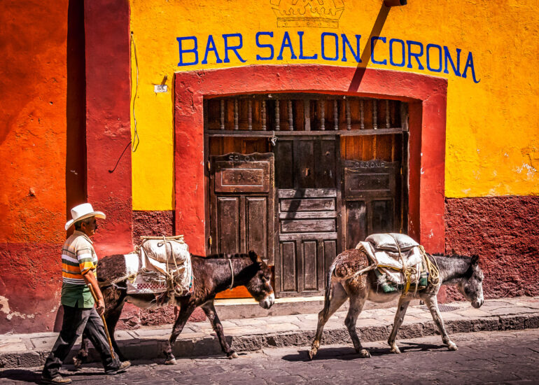 Colonia - Centro Historico, EVENTS, Mexico, North America, San Miguel, San Miguel de Allende, San Miguel11, accessories, animal, building, commercial building, cowboy hat, donkey, farm animals, hat, mammals, street scene