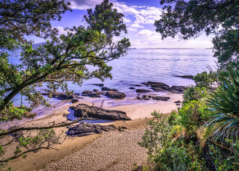Auckland, Cheltenham Beach, Devonport, New Zealand, North Island, Oceania, landscape