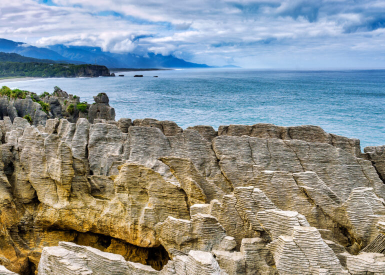 Macphun Luminar, New Zealand, Oceania, Punakaiki, South Island, Westcoast District, flowers, landscape, panoramic, rock, rock face. scenery, tourism