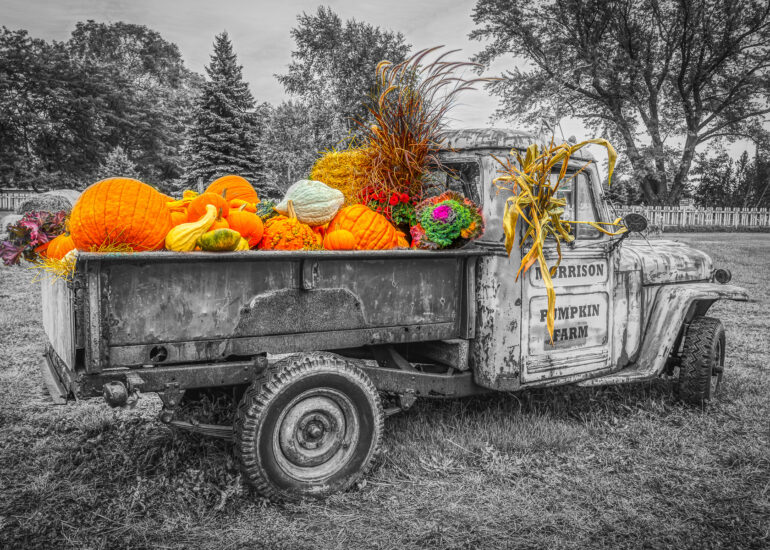 Canada, Collingwood, HDR, MacPhun Aurora HDR, North America, Ontario, black & white, digital art, outdoor, outdoor photography, outdoors, photography